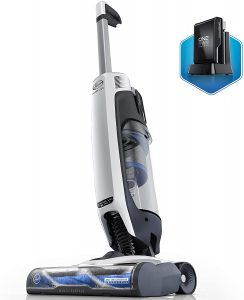 5. HOOVER ONEPWR EVOLVE PET