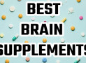The Top 5 Best Brain Supplements for Studying College Students 2022